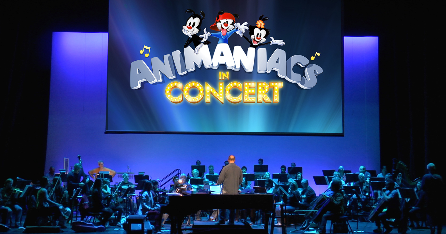 Animaniacs: Zany to the Max' JUNK